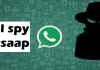 social spy whatsaap