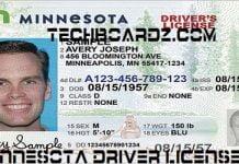 Minnesota driver license renewal